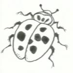 Πασχαλίτσα