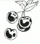 Κεράσια