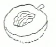 Ροδάκινο