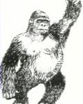 Γορίλας
